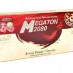 megatonx280x191