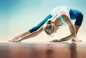 yoga_silax280x191
